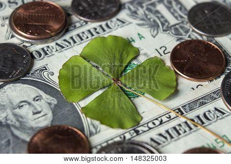 Four leaf clover cash currency dollar US