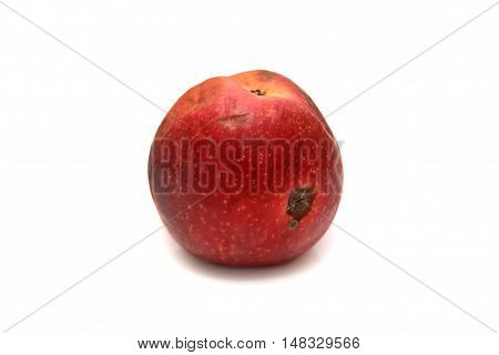 Red rotten apple isolated the natural texture.