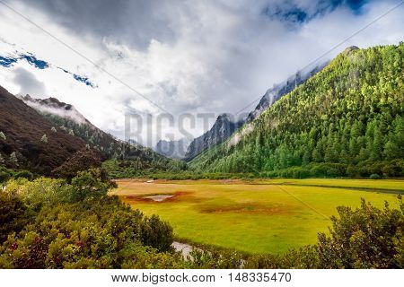 Yading Nature Reserve, Daocheng County, Sichuan, China