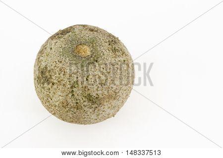 Single bael or wood apple fruit (Aegle marmelos) on a white background
