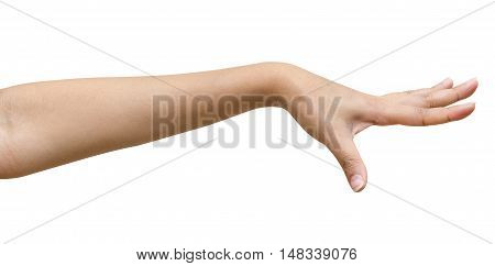 Beautiful female hand with french manicure nails isolated on a white background Clipping path included.