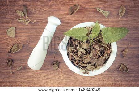Vintage Photo, Fresh Green And Dried Lemon Balm With Mortar, Herbalism, Alternative Medicine