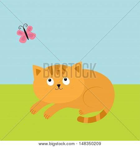 Cute red orange cat lying on grass and looking at flying pink butterfly. Mustache whisker. Funny cartoon character. Flat design. Vector illustration