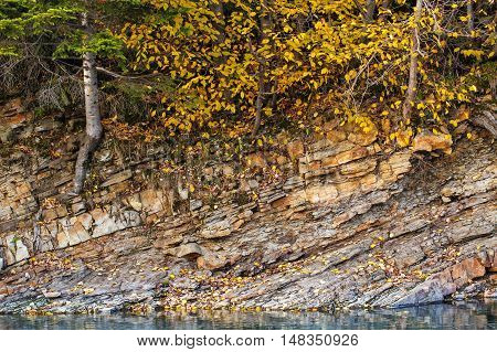 beautiful Landscape, mountain stream and rocky shore in autumn forest