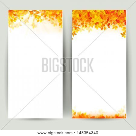Set of two nature banners with autumn red, yellow, orange leaves on the branch.