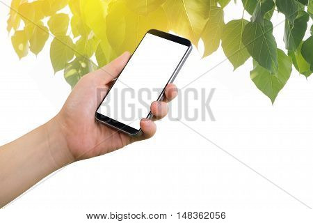 Human hand hold on smartphone tablet cell phone with blank screen on green leaf and golden light background effect.
