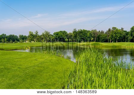Spring meadow landscape with a lake  water