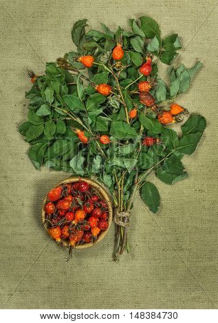 Briar brier wild rose. Dried herbs for use in alternative medicine spa herbal cosmetics herbal medicine preparing infusions decoctions tinctures powders ointments butter tea bath.
