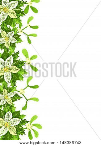 Christmas background with white poinsettia mistletoe and holly leaves decoration elements. Vertical banner with border and copy space for your text or design