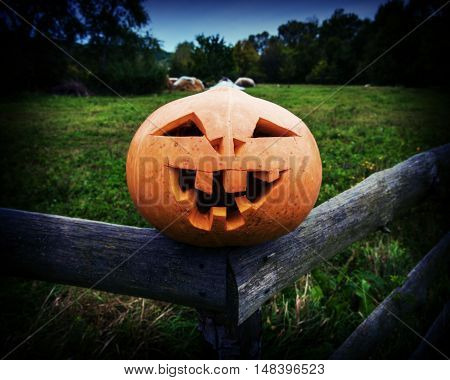 Scary pumpkin on Halloween on on rustic wooden fence