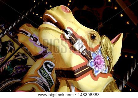the head of two roundabout horses at a fairground