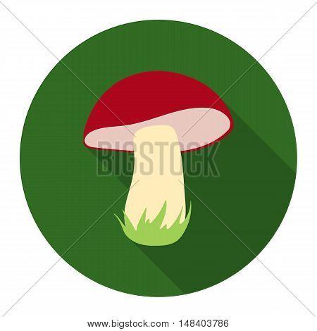 Mushroom vector illustration icon in flat design