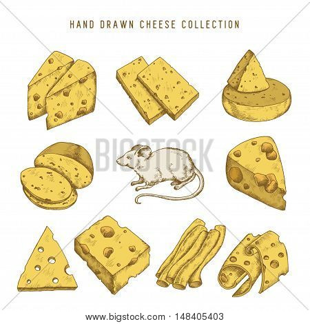 Hand drawn doodle cheese set with different types of cheeses and mouse. Vector vintage illustration.