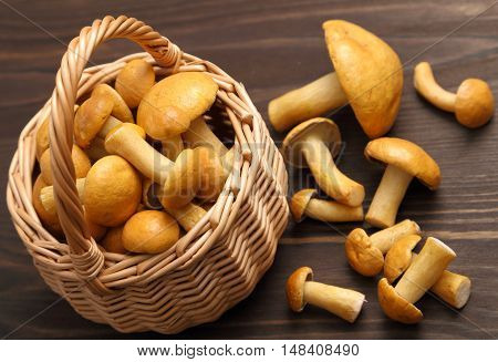 Edible bovine bolete mushrooms in a wicker basket.