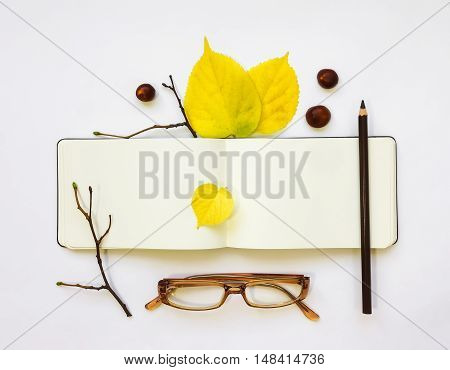 Closeup of leather pen case notebook and glasses on white background. Decorated with autumn yellow leaves and branches. Top view flat lay
