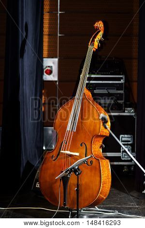 Big Bass Viol On The Scene Before The Concert