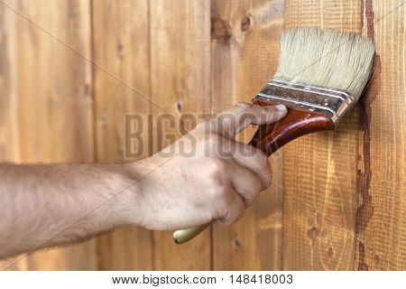 Male hand painting wooden surface - closeup