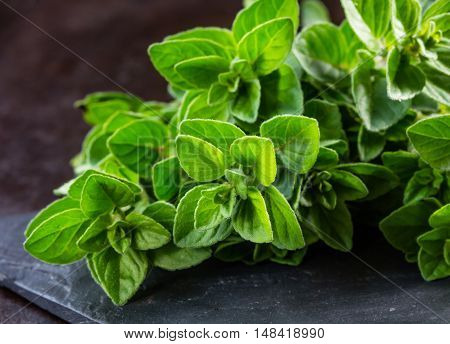 Fresh oregano on black stone table. Bunch of oregano Background