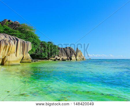 Shore Dream Summertime