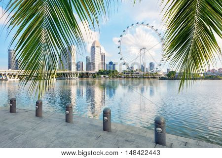 Singapore Bay from gardens side with palmtree on foreground