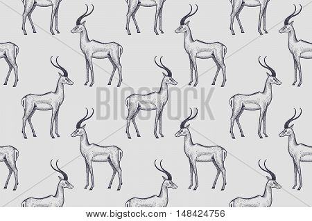 Old engraving antelope. Vector illustration seamless pattern. White and black. African animals.