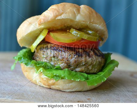 Grilled Turkey or Chicken Burger served garniched with a tomato slice, pickles and lettuce.