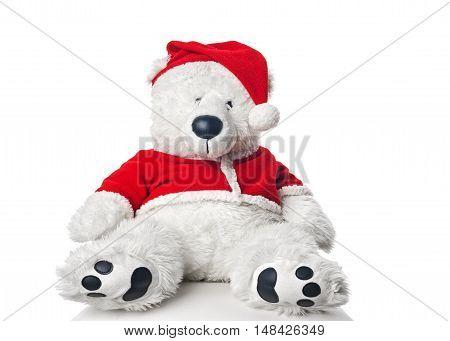 Christmas bear wearing a santa hat on white