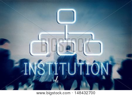 Institution Organization Chart Business Company Concept