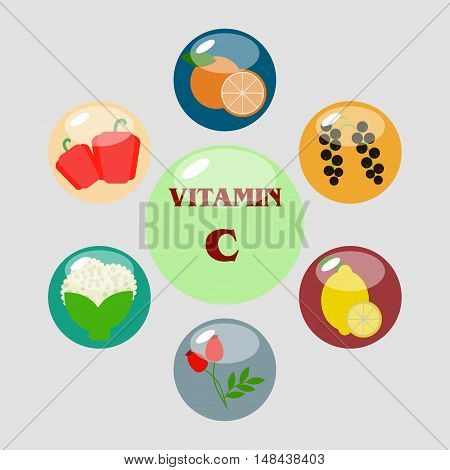 Vitamin C vector illustrations. Foods high in vitamin C