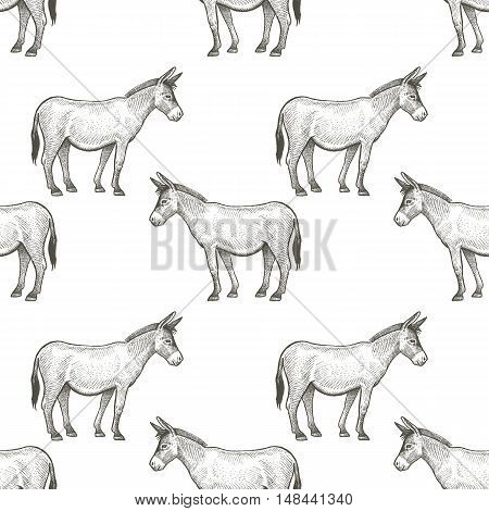 Donkeys. Seamless vector pattern with animals. Black and white illustration.
