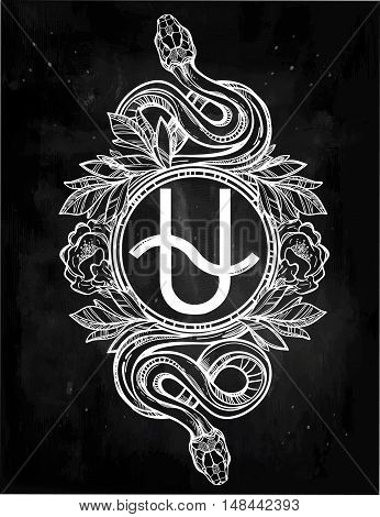 Vintage tattoo art. Highly detailed hand drawn snakes with Ophiuchus constellation line artvstyle. Engraved isolated vector illustration.