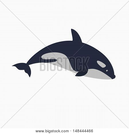 orca - killer whale vector illustration. great as logo element
