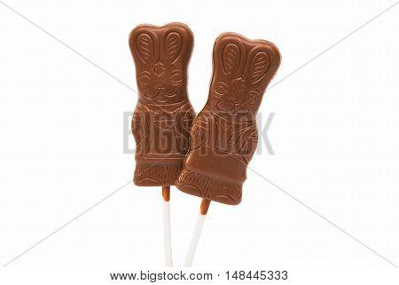 chocolate bunny decorative isolated on white background