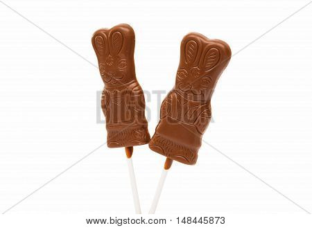 chocolate bunny decoration isolated on white background