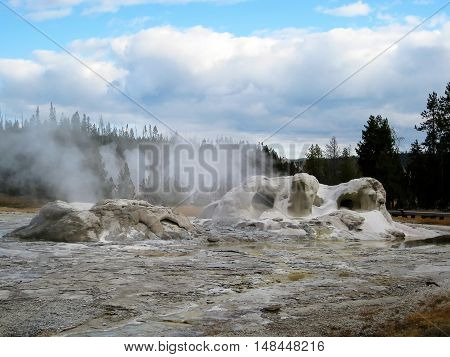 Grotto Geyser in Upper Geyser Basin, Yellowstone National Park, Wyoming, USA
