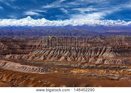 Earth Forest Geopark In Zhada County, Tibet