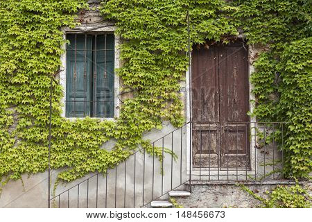 An old stone wall with a door, stairs, windows, overgrown with ivy. Italian village.