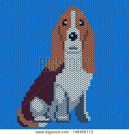 Vector knitted dog pattern. Basset on blue background. Illustration