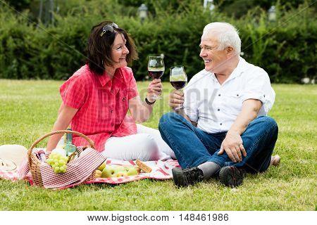 Smiling Senior Couple Drinking Wine In Park