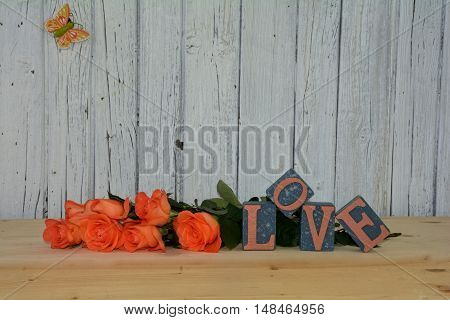 Blocks with the word love and lots of roses wall before Wood