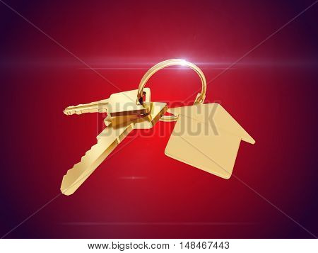 Key with blank golden label for your text isolated on red background. 3D rendering