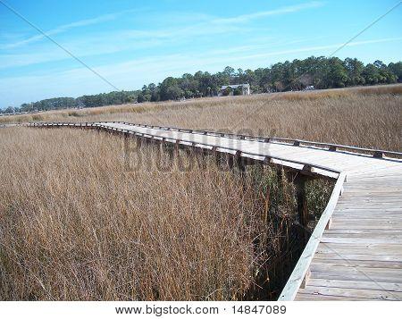 Tybee Island Foot Bridge