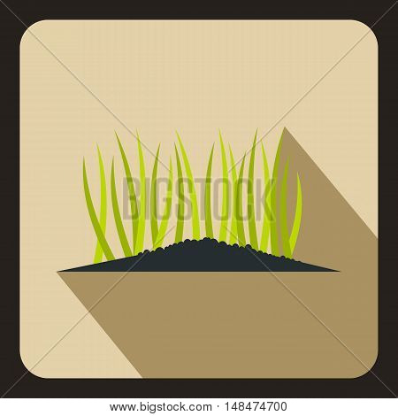 Young sprout seedlings icon in flat style on a beige background vector illustration