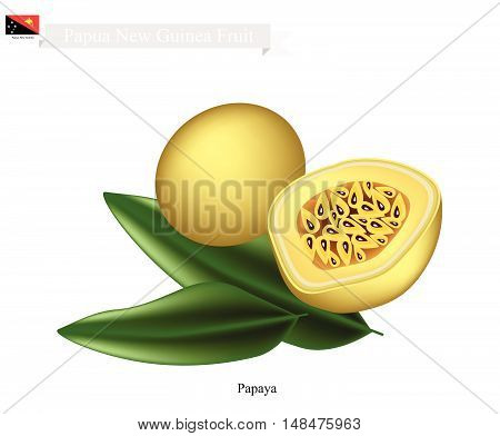 Papua New Guinea Fruit Illustration of Maracuja or Passion Fruit. One of The Most Famous Fruits in Papua New Guinea.
