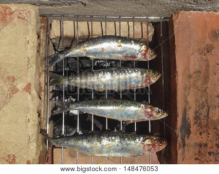 Grilled sardines cooked in hot coals with traditional barbacue made with red bricks. High view angle