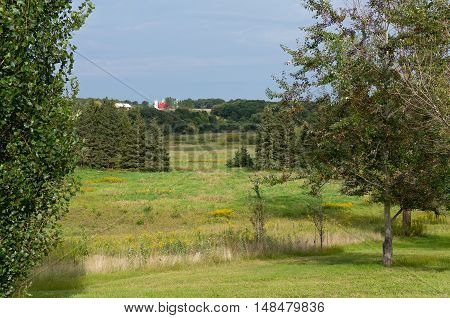 prairie grasses mixed woodlands of conifers and deciduous trees and farm in chaska minnesota