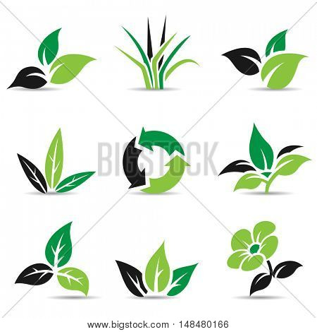 Illustration of Black and Green Leaves isolated on white