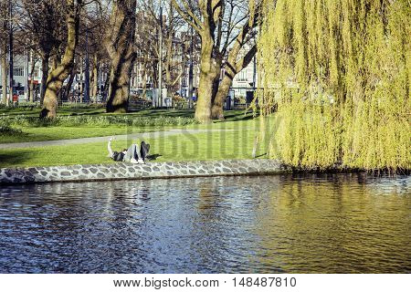 two young guys hipsters chilling on green grass outside in park at sundown, relaxing people lifestyle concept, couple from back side of river