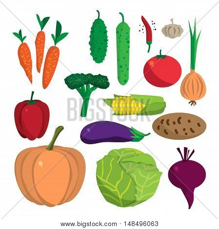 Farm vegetables flat vector cartoon set. Organic healthy food symbols. Harvest autumn infographic elements. Agriculture design