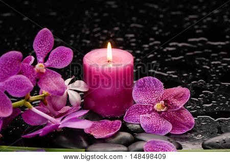 Branch orchid and red candle on black stones